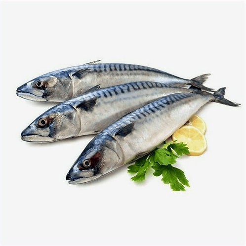 Seer Fish (vanjaram) Gross Wt:1KG     Net Wt:750gms