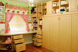 horizontal murphy bed with built ins