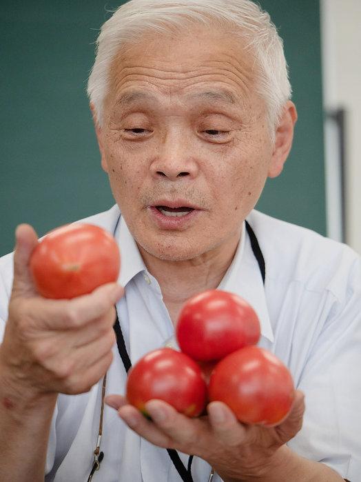 戸嶋さんのフルーツトマトを見る担当者・木村