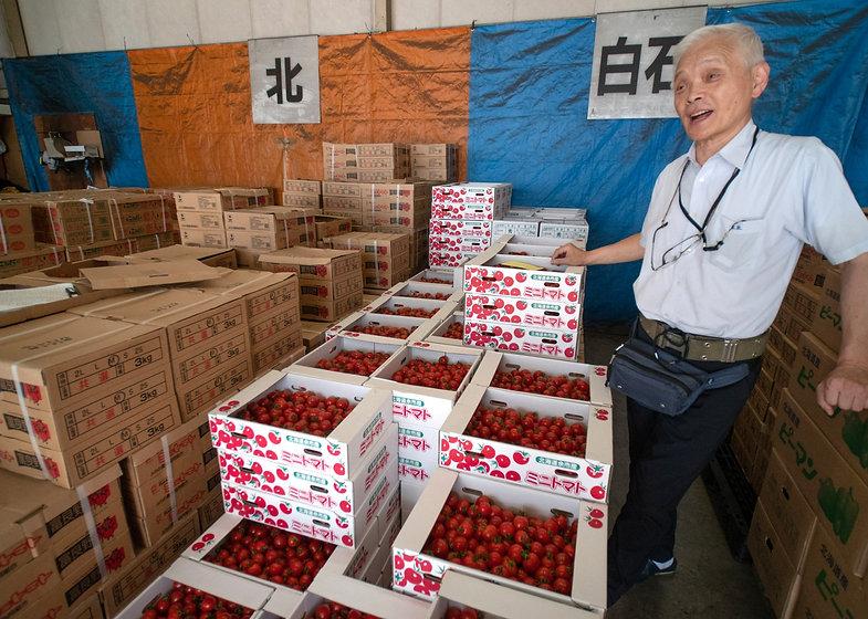 トマトの箱と木村