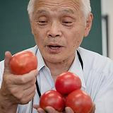 トマト担当・木村