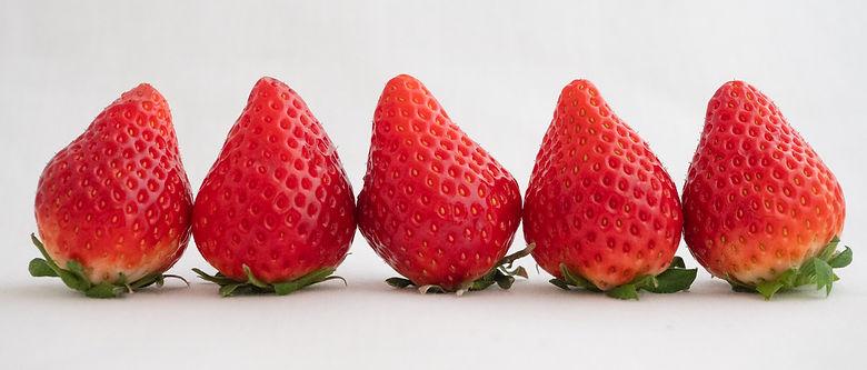 並んだイチゴ