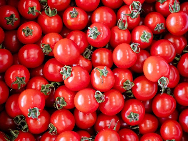並んだミニトマト