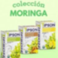 Te presentamos la colección de Moringa o