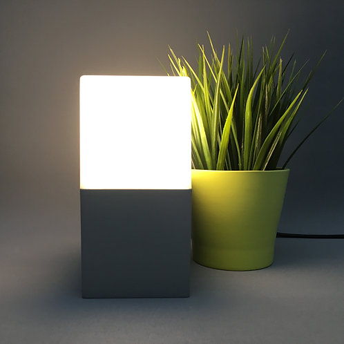IP44 Outdoor Wall Light: WL-CG80201F-SV