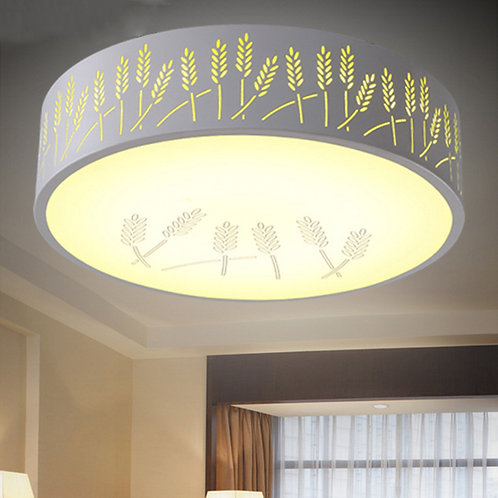 LED Ceiling Lamp ~ CL-J06420-36RGB