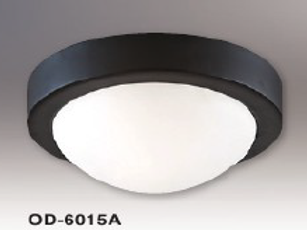Ceiling Lamp / Wall Lamp