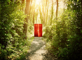 A red doorway is on a trail in the woods with trees for a concept about faith, freedom or opportunity.jpg
