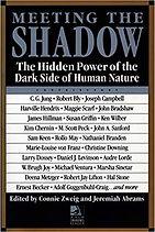 Meeting Shadow Book.jpg