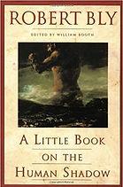 A little Shadow Book.jpg