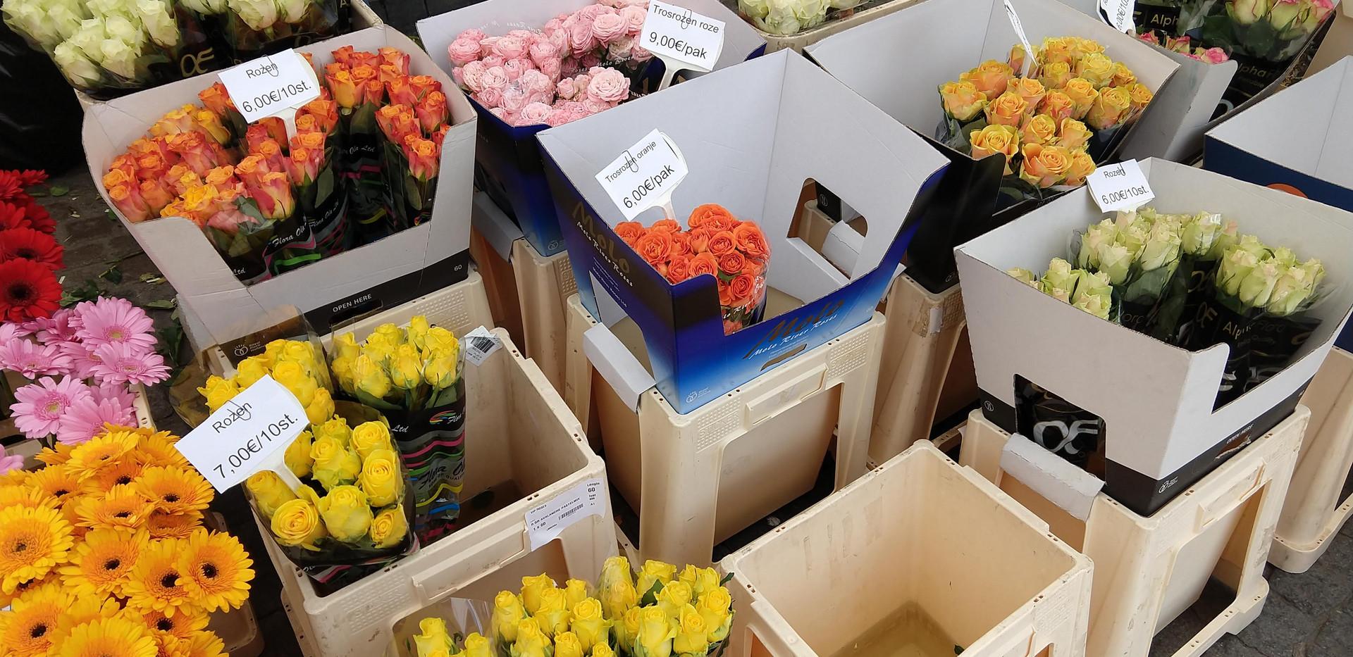 Flowers 27.jpg