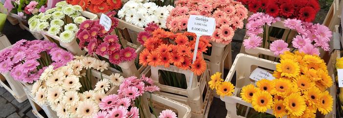 Flowers 26.jpg