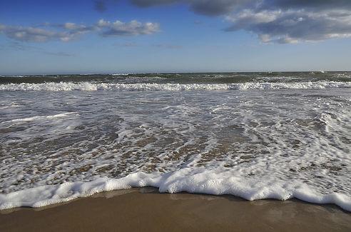 beach-2225973_960_720.jpg