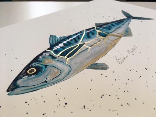 Padstow Mackerel