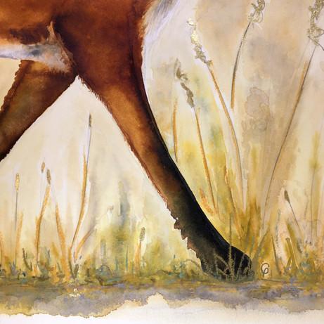 Ridgeway Fox (detail)