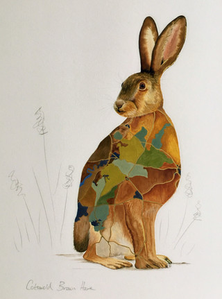 Cotswold Brown Hare