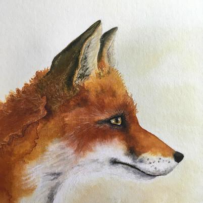 Ridgeway Fox (detail).