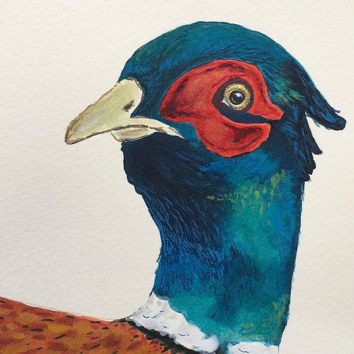Cirencester Pheasant