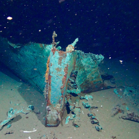 Shipwreck Microbiomes In The Gulf Of Mexico