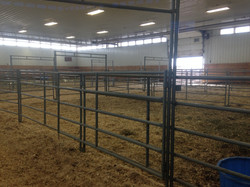 Bull Sale Pens Warm Up Arena