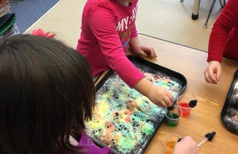 Preschool Science Project