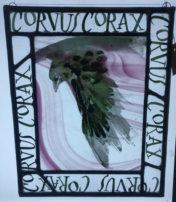 CORVUS CORVAX