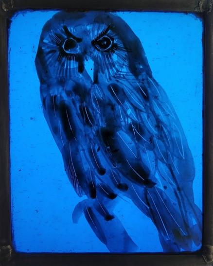 WEE BLUE OWL