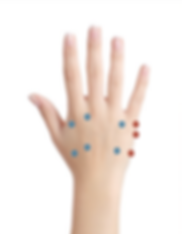 Hand Tung Points.png