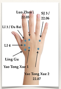 SBAL Hand Acupuncture Points.png