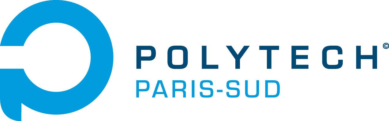 Polytech-Paris Sud