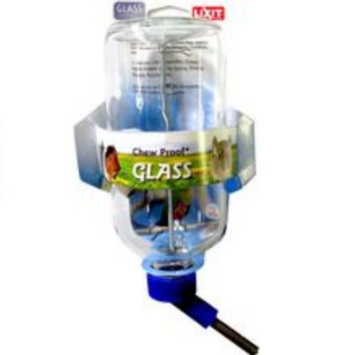 Bouteille d'eau en verre Lixit 8 oz