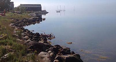 Shelburne Harbour Calm.jpg