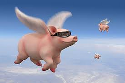 flying pig4.png