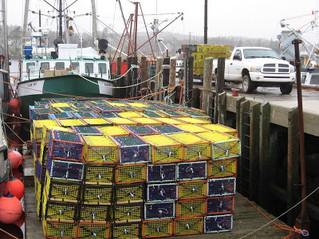 Getting Ready for Lobster season