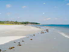 65_roseway-beach.jpg