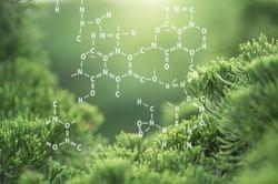 Plants background with biochemistry structure.jpg