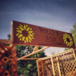 Polly Run sign_edited