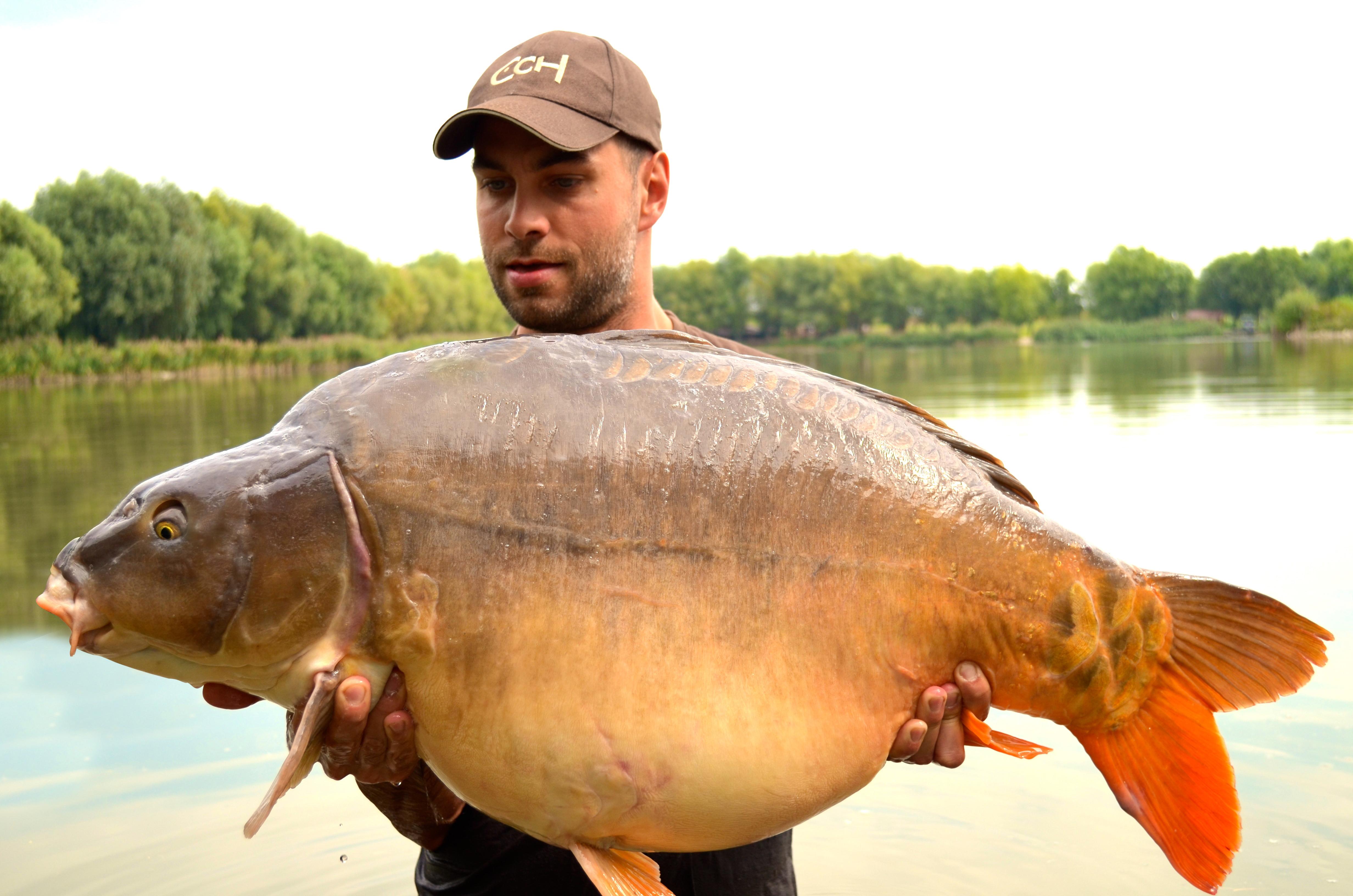 Paradise Lake   Catch Carp Hungary