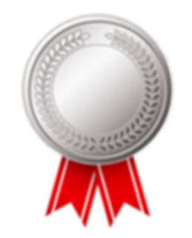 Silver_Medal_(CCW_Awards).png