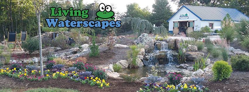 waterfall installation & service company in NC & TN. Retail sells supplies, fish, plants & more