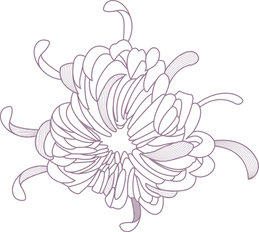 Flower%20Outline%20_edited.png