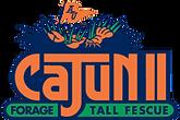 CajunII-logo_0-250x167.png