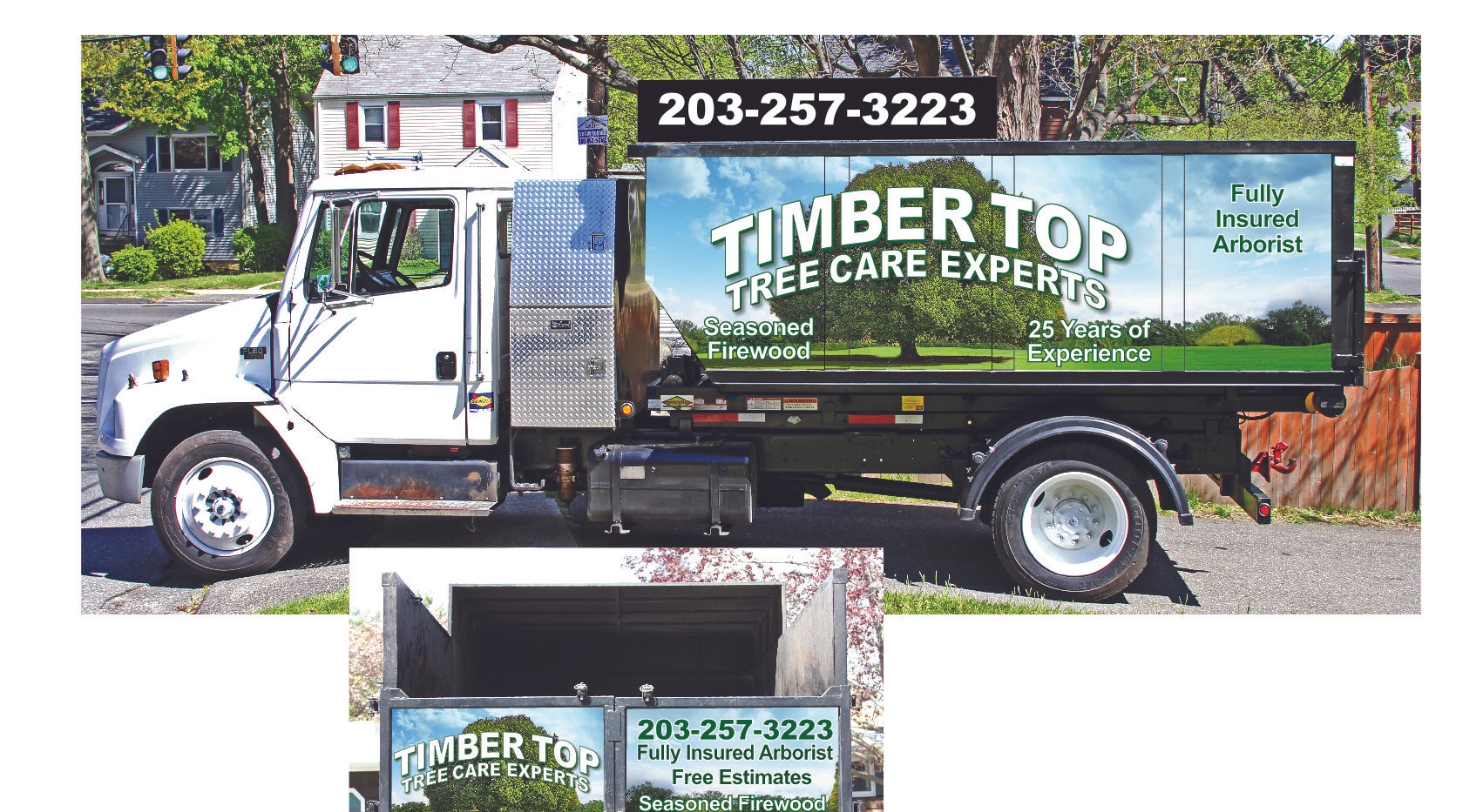 TIMBER+TOP+TRUCK+SIDE+3.jpg