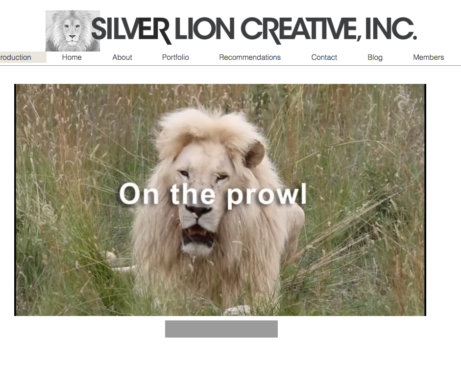 Landing page Silver lion