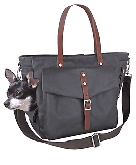 Dog Carrier Tote Bag / Dog Purse