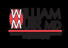 WSM_Google_Logo-01.png