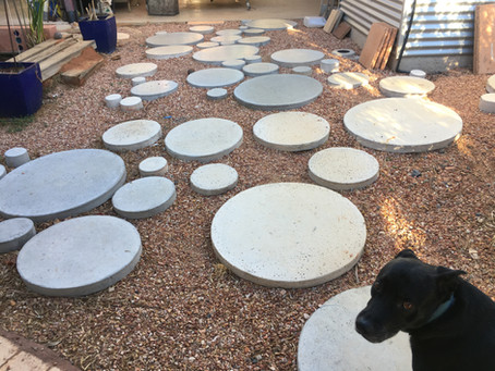 J9 Lilypads: Stepping Stone Dreaming