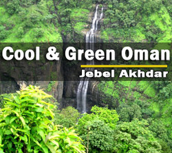 cool&green