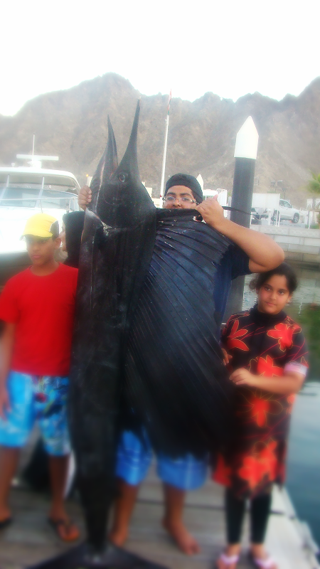 Fishing - Large Sail Fish on display caught by Jassa Beach Guest_edited