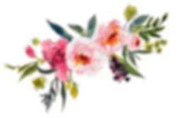 flower-clipart-transparent-15.png